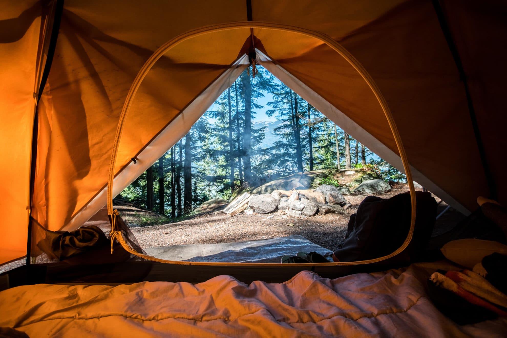10 x Metal Tent Pegs For Camping Gazebo Ground Sheet Caravan Strong Hooks 18cm