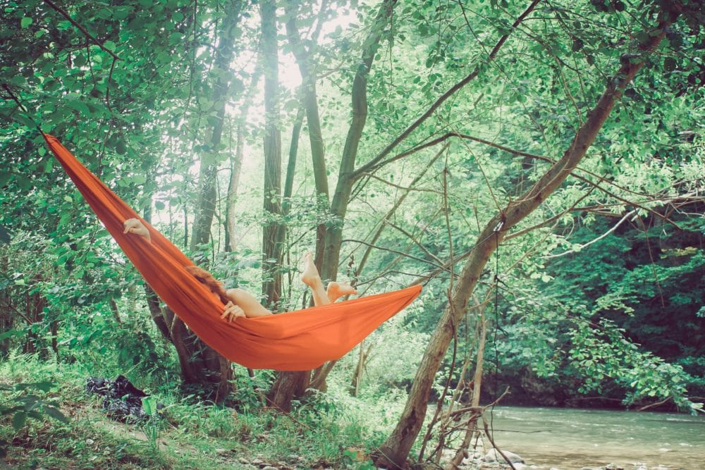 A hammock in the woods.