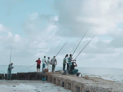A group of people fishing from a pier.