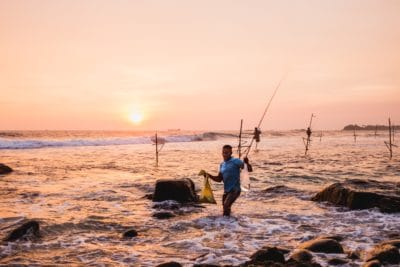 A man stilsfishing in Unawatuna