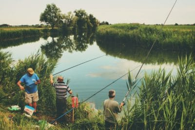 A group of men fishing in a stream.