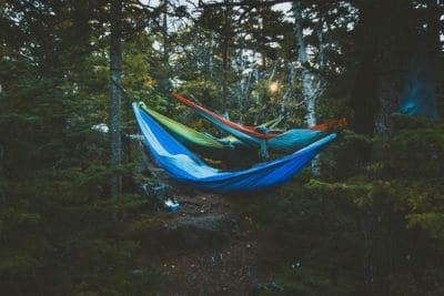 Some hammock tied to trees in the woods.