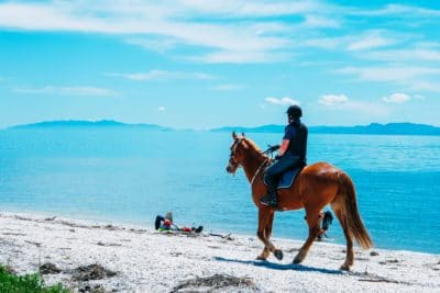 A person on a horse by the sea.