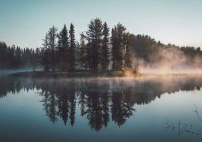 A lake and wilderness covered in fog.