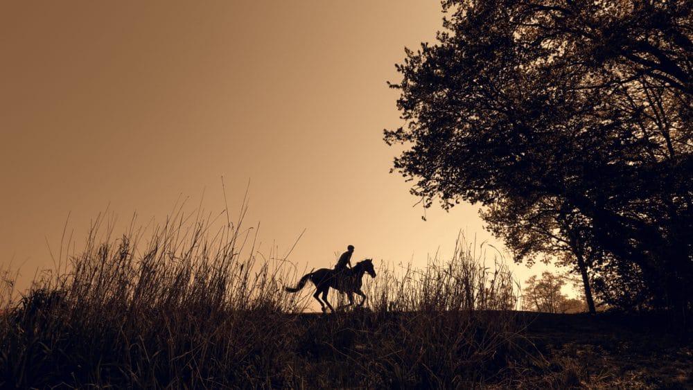A horse running through a field.