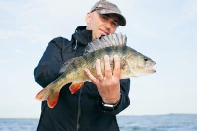 A man holding a bass fish.