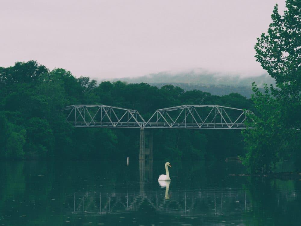 Shenandoah, United States.
