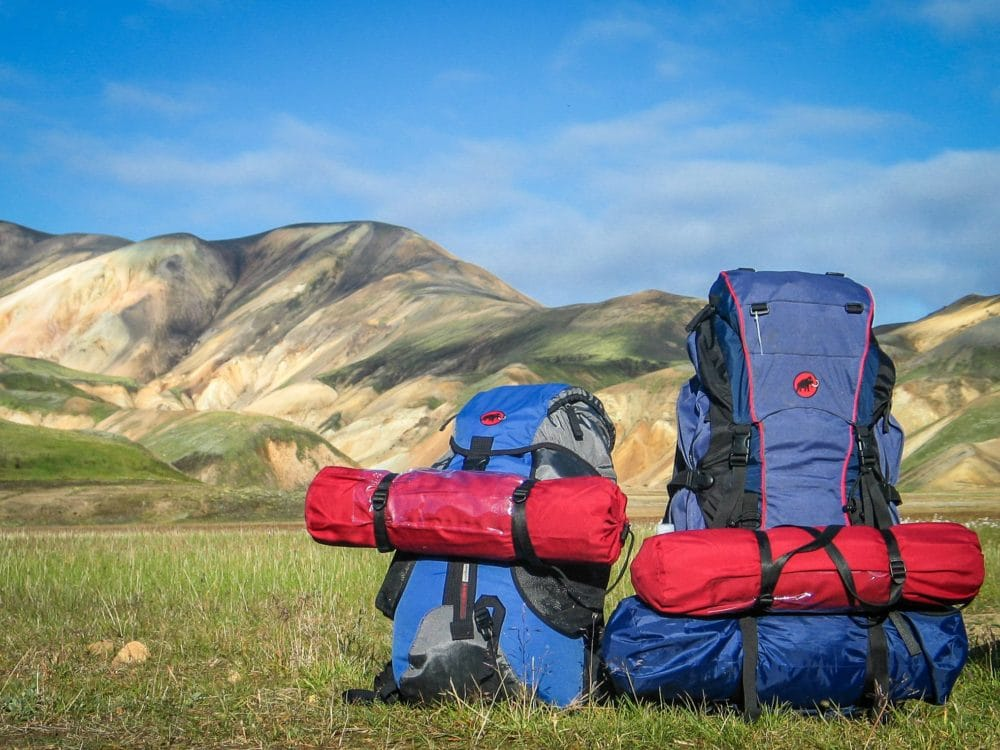 Hiking backpacks on the grass with mountains in the background.