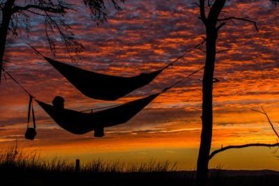 Two hammocks tied between two tress during sunset.
