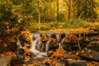 Waterfalls in forest photo.