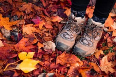 A pair of brown hiking boots in fall leaves.