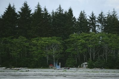 A campsite next to a lush green forest.