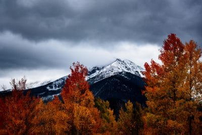 Orange and red trees and a snowy mountain.
