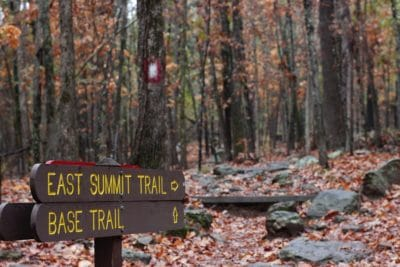 Trail signs on the Appalachian Trail during autumn.
