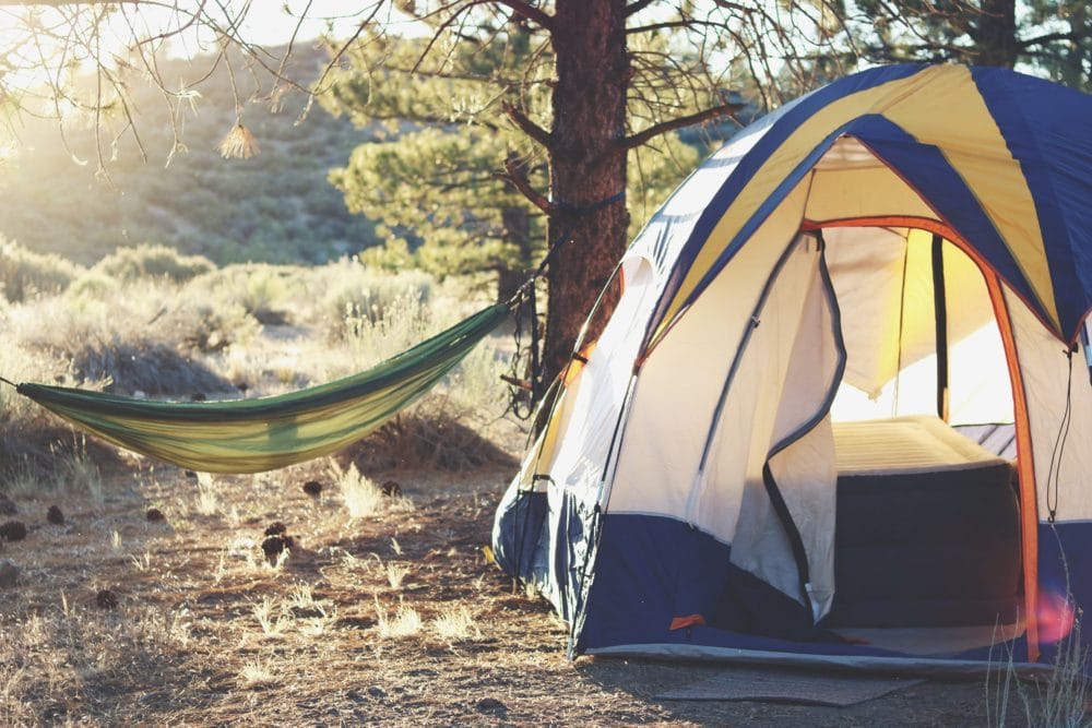 A tent in the forest next to a hammock between two trees daytime.