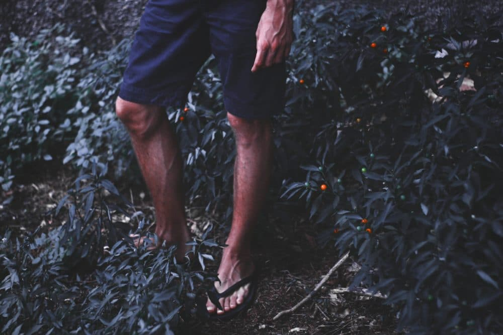 Person wearing flip flops on a hiking trail.