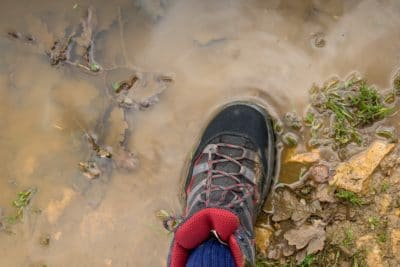 A shoe in the mud.