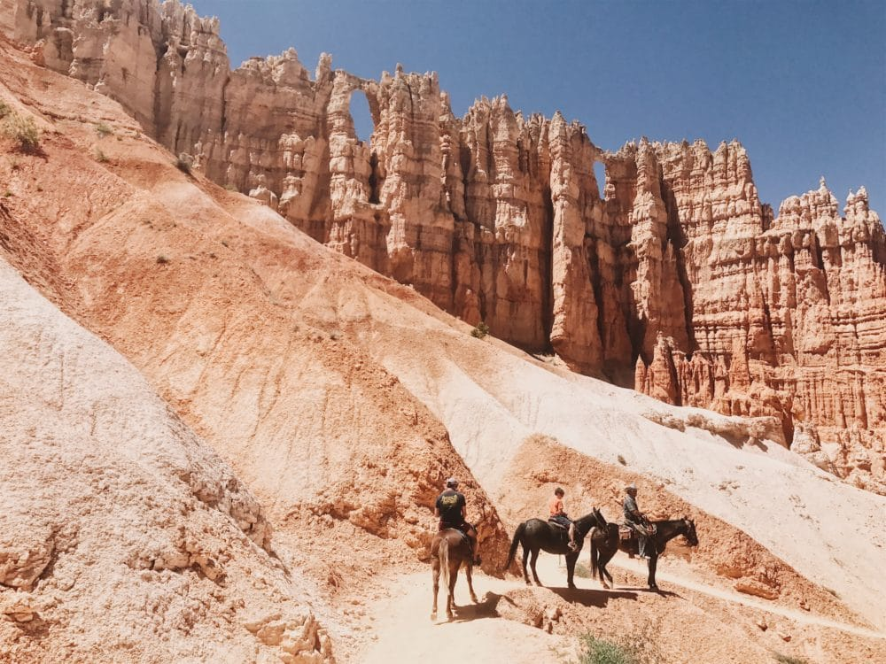 Some people on horses in a canyon.