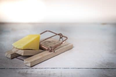 A mouse trap with cheese.