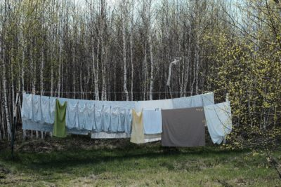 Bedding hanging from a clothes line int he woods daytime.