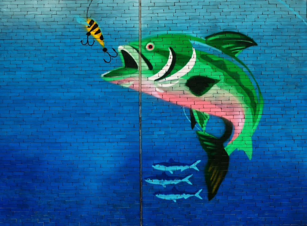 A mural of a fish being caught.