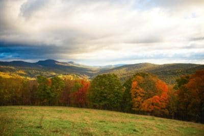 A green field in Virginia.