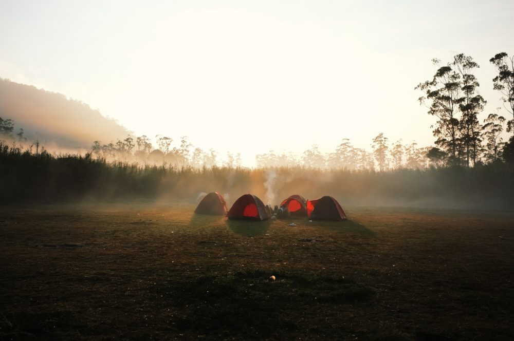 A couple red tents in a field in the mist.
