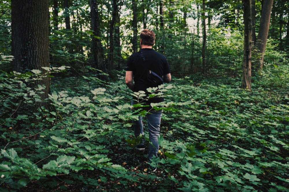 A man walking through the forest.