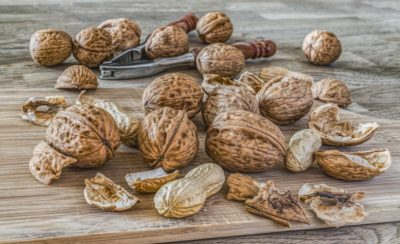 Hickory nuts.