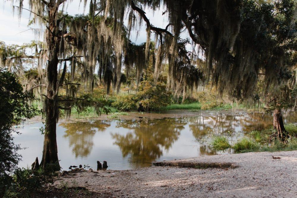 A lake in Louisiana.