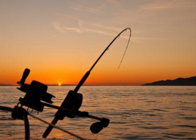 Fishing rod during sunset on a lake.