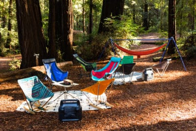Camping amongst Redwoods.