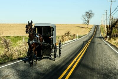 A horse and carriage on the street.