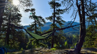 hammock attached to trees