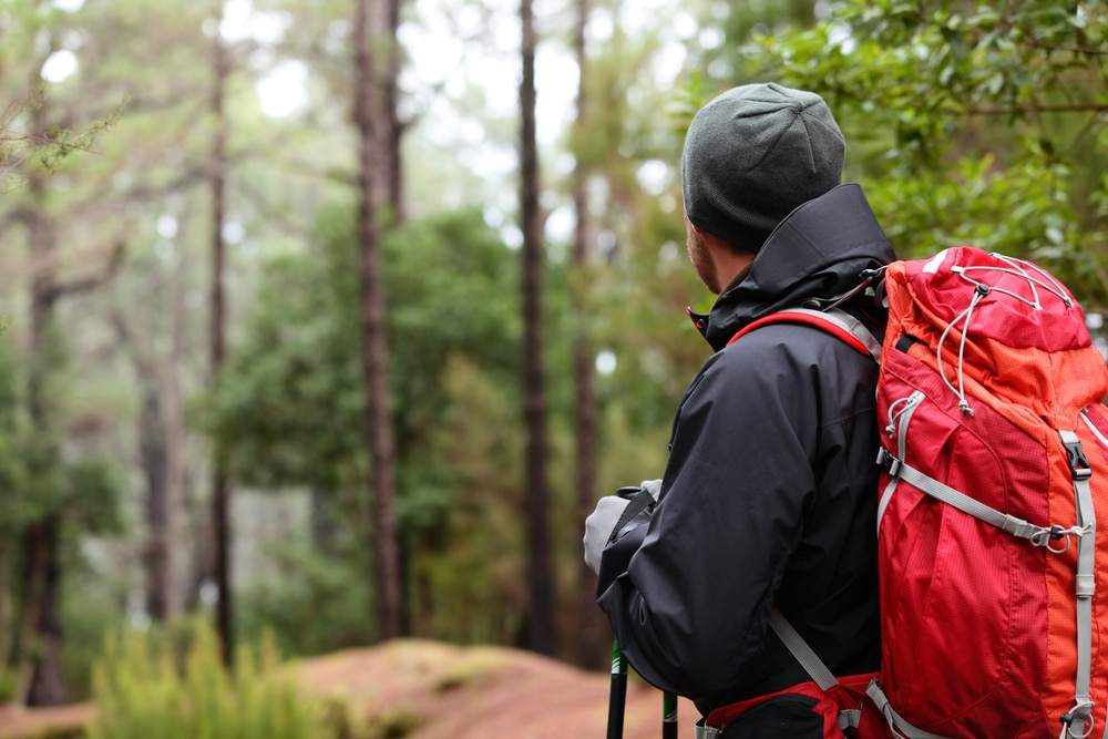 Hiker wearing hiking backpack and hardshell jacket on hike in forest.