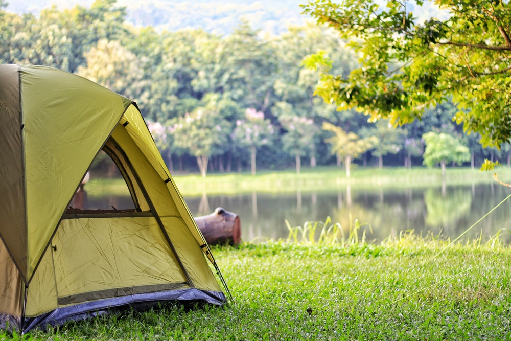 Camping green tent in forest near lake