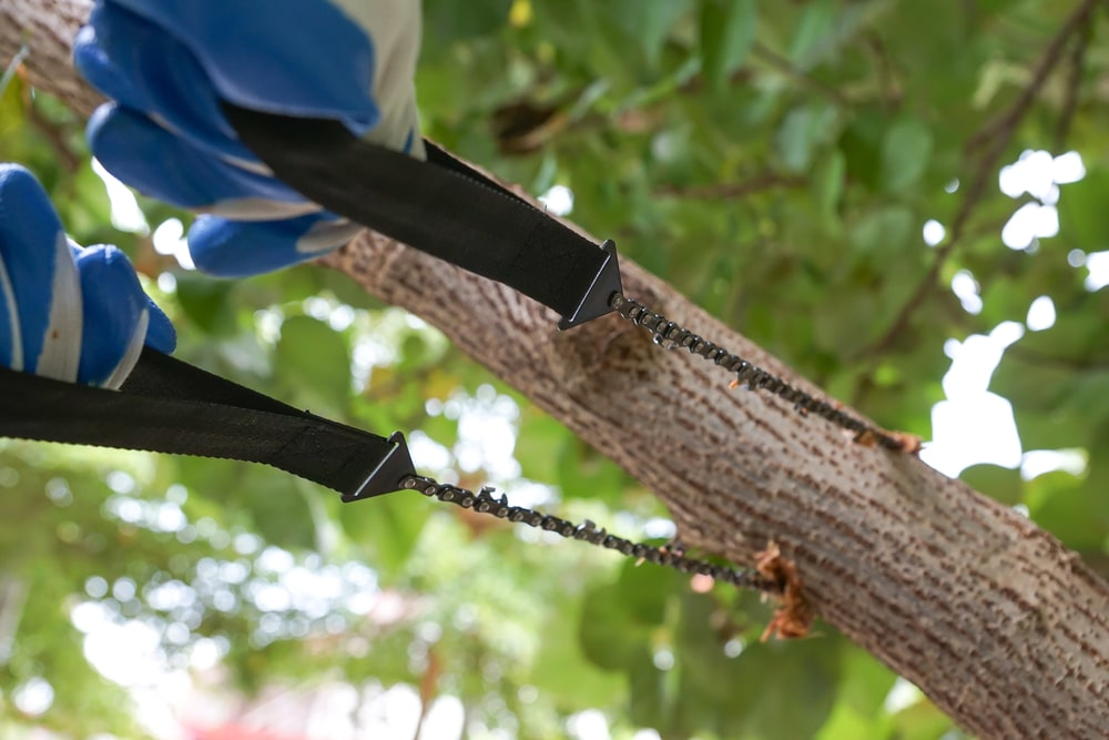 Using a pocket chain saw to cut tree branch