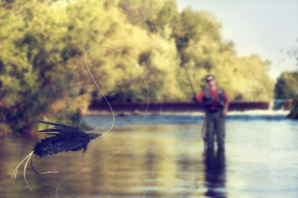 a person fly fishing in a river