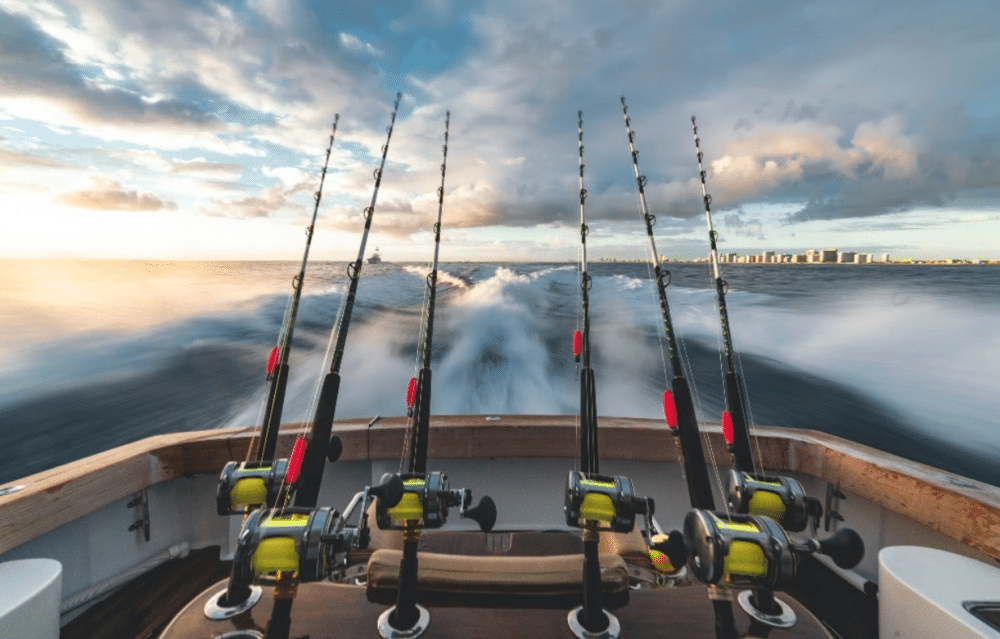 8 types of fishing rods