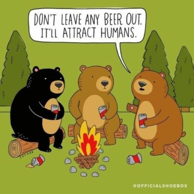 14 Times Animals Joined Your Camping Trip (Hilarious Comics and Memes) | Funny  camping memes, Camping jokes humor, Camping memes