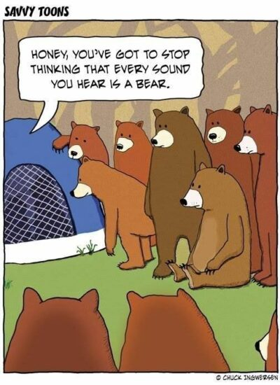 14 Times Animals Joined Your Camping Trip (Memes) | Camping jokes, Camping  humor, Camping jokes humor