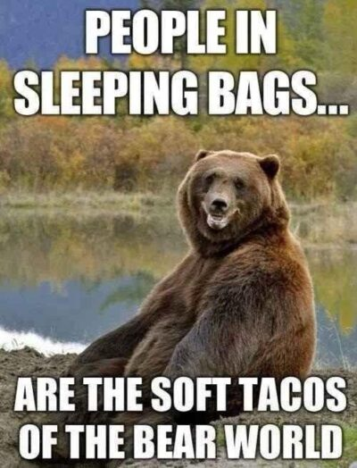 30 Funny Camping Quotes - EnkiQuotes