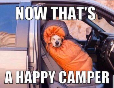 Best Camping Memes August 2020 – RV Hacks and Humor