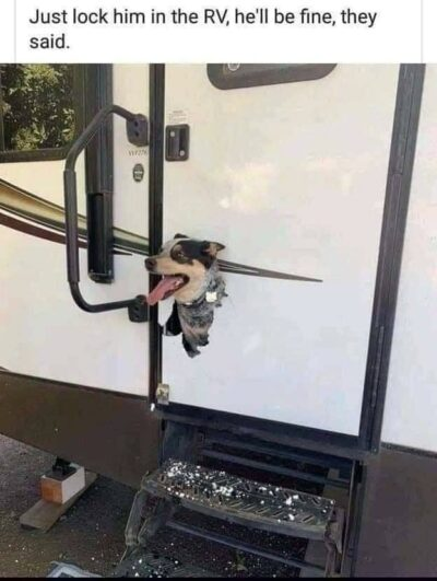 Funny camping photos and memes of the week - RV Travel